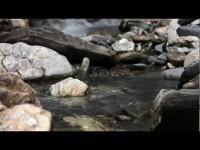 Escursionismo in Tirolo