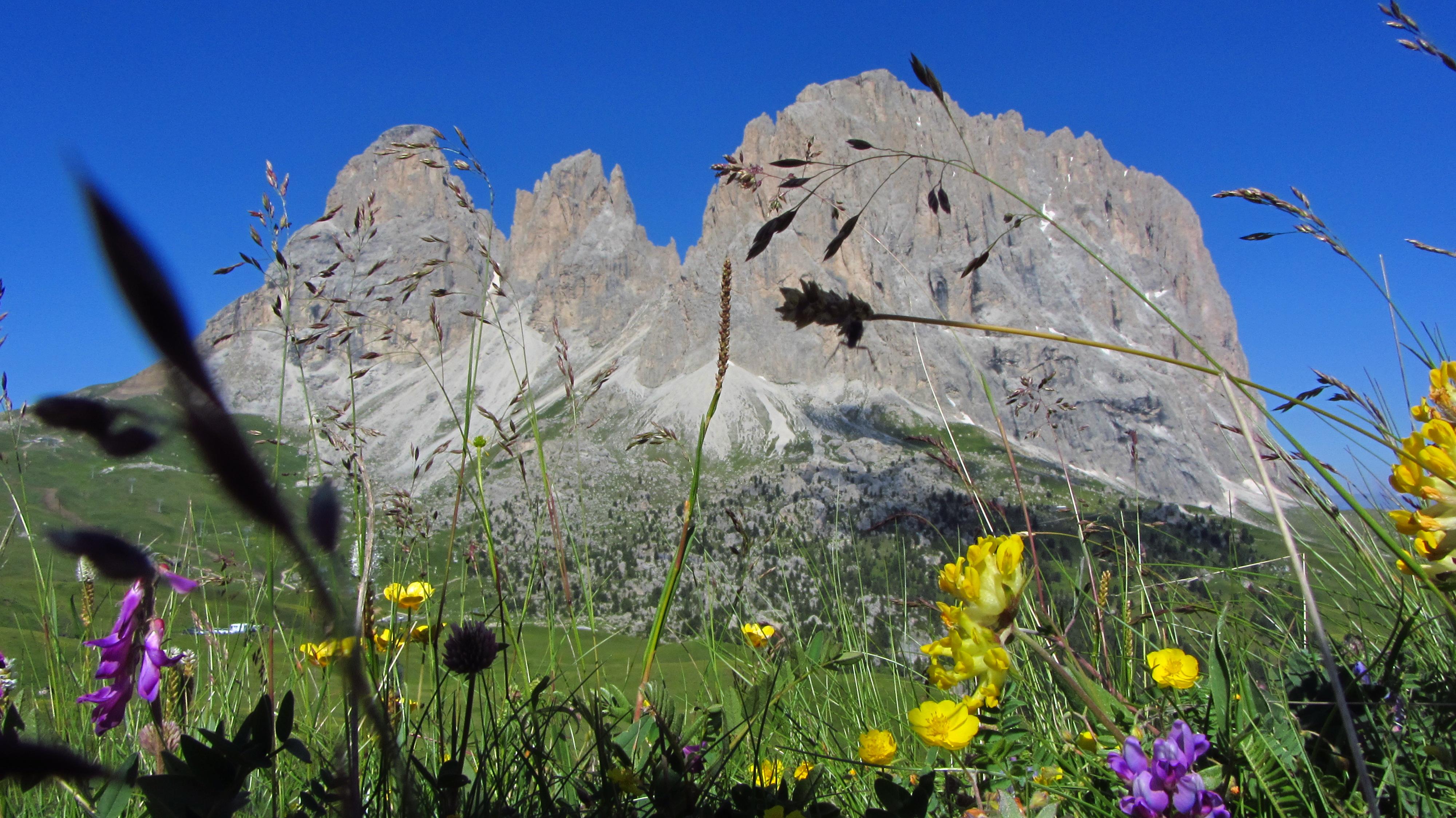 100 magnifiche foto delle dolomiti in estate blog - Immagini da colorare delle montagne ...