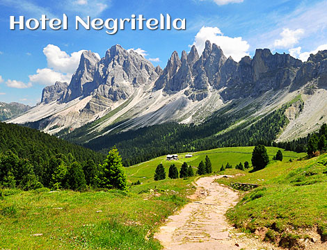 Offerta Vacanza Dolomiti: hotel in Val di Fiemme