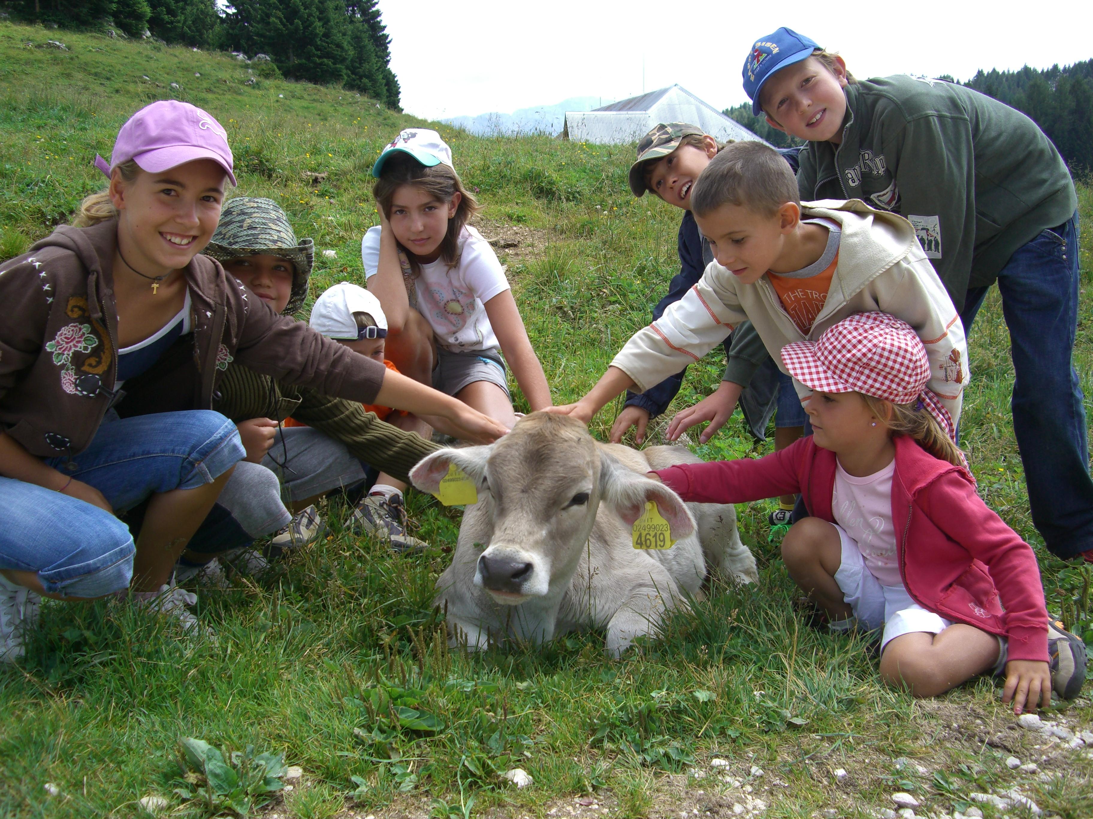 Asiago Estate Family, offerta vacanza estate in montagna con la famiglia