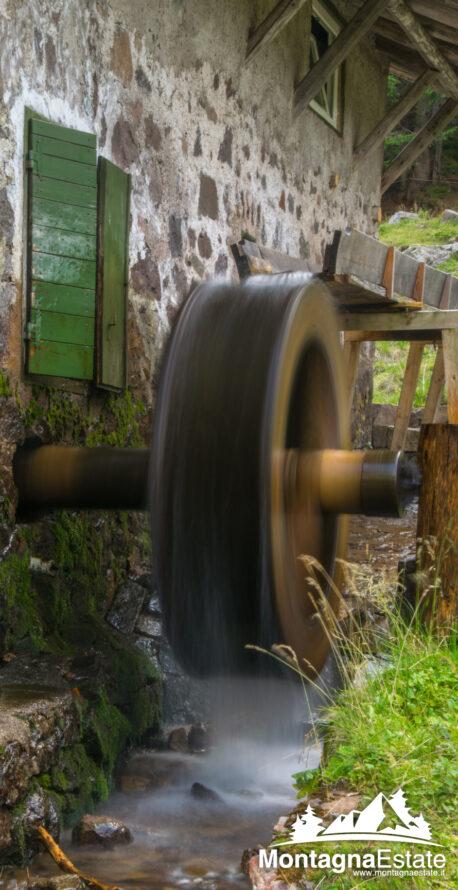 Mulino in Funzione Alpeggio Val Maggiore Predazzo