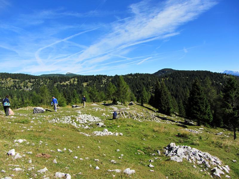 Estate in Montagna: Offerta Settimana Verde sull'Altopiano di Asiago