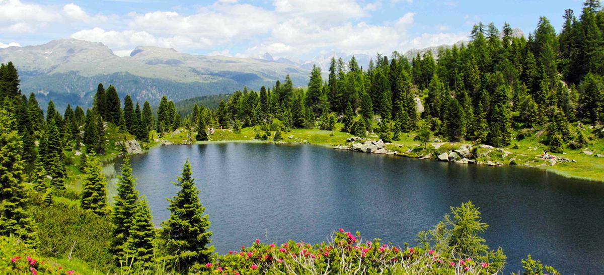 Laghi di colbricon laghi di montagna montagna estate for Disegni di laghi