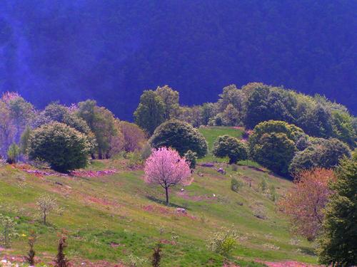 Da Pra all'Alpet per la Rocca Rosa
