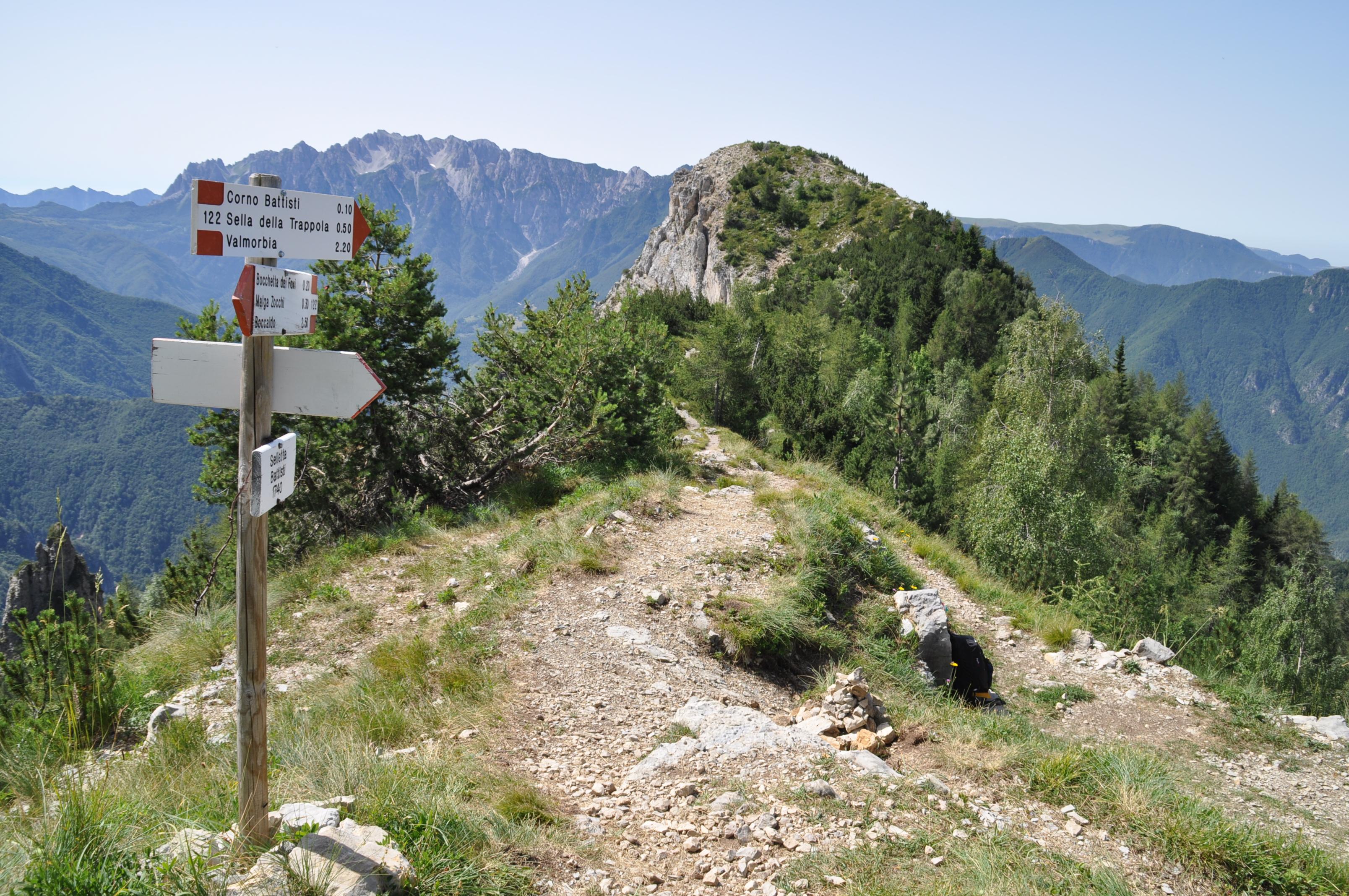 Albe in Malga sul Monte Pasubio