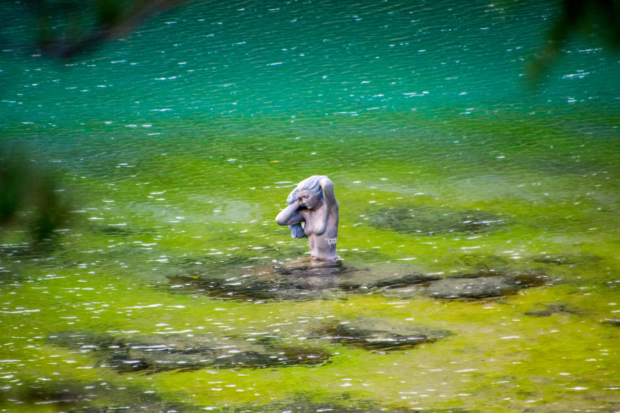 ninfa lago carezza