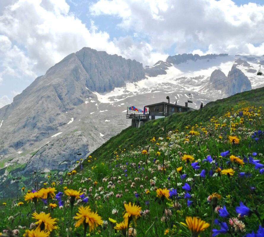 rifugio padon in estate con vista marmolada